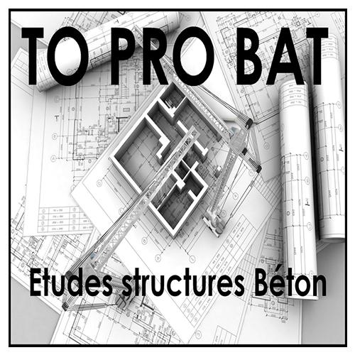 Logo TO Pro Bat