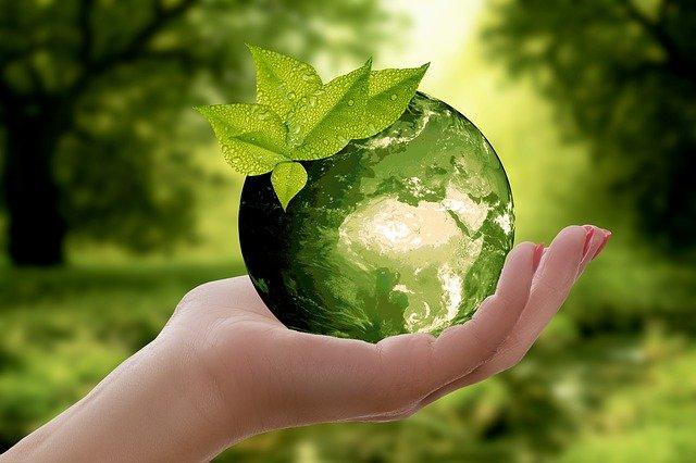 Traduction environnementale : la spécialisation de demain ?